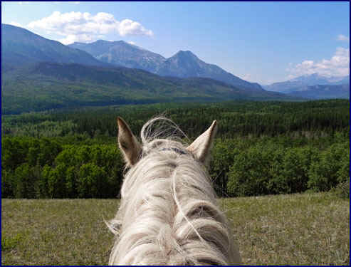 The Willmore Wilderness Area, Alberta, Canada