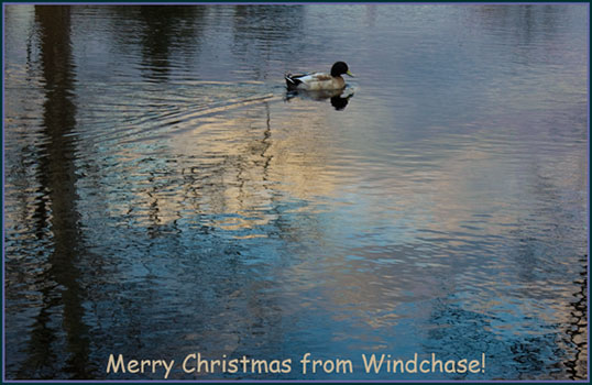 Merry Christmas from Windchase!